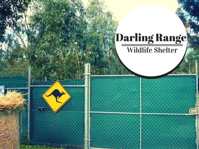 Darling Range Wildlife Sanctuary (1)