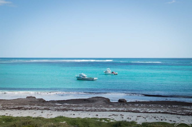 Lancelin Zachodnia Australia